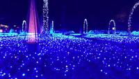 Lễ hội ánh sáng tại công viên Nabana no Sato