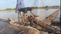 Diêm dân Bến Tre bắt đầu sản xuất vụ muối năm 2017