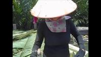 """Những """"bóng hồng"""" hái lá dừa người chia sẻ với PV"""