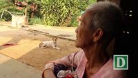 Xót xa hoàn cảnh cụ bà 81 tuổi mù mắt phải nuôi 3 cháu nhỏ thơ dại