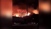 Cháy rừng dữ dội ở Mỹ, ít nhất 212.000 người phải sơ tán
