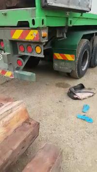Bắt xe chở gỗ