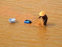 """Bình Định: Làng """"tắm"""" mình dưới sông 10 tiếng mỗi ngày nhủi ốc mưu sinh"""
