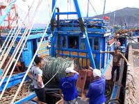 Bình Định: Ngư dân hối hả mở chuyến biển đầu năm