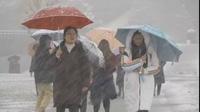 """Người Nhật Bản """"quay cuồng"""" vì bão tuyết kỷ lục"""