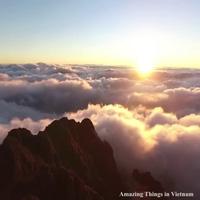 Cảnh đẹp như thiên đường trên đỉnh Fansipan
