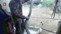 Chuyên gia bắt rắn bị hổ mang cắn chết khi đang hướng dẫn cách bắt rắn an toàn