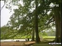 Nhạc phim Đất và người