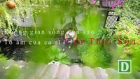 Cao Thái Sơn chia sẻ về căn nhà của mình