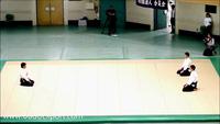 Võ sư Namba Hiroyuki biểu diễn những tuyệt kỹ Aikido tại Nhật Bản (2012)