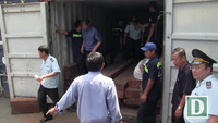 4 tấn vảy tê tê nguỵ trang trong thùng container chứa gỗ