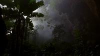 Khám phá vẻ đẹp kỳ diệu của hang Sơn Đoòng