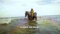 Kỳ lạ nghề cưỡi ngựa bắt tôm