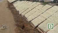 Cảnh hàng tấn miến phơi ven đường mất vệ sinh ở Hà Nội