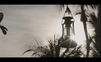 """MV """"Yêu từ phía xa"""" của ca sĩ Chi Dân"""