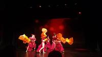 Màn trình diễn rực rỡ sắc màu của vũ công Đỗ Hồng Hạnh và các học trò