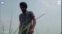 Video nông dân bốc đầu máy kéo