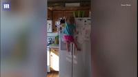 """Video bé gái """"người nhện"""" trèo tủ lạnh thoăn thoắt"""