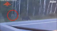 Video quái vật không mặt bí ẩn gây xôn xao ở Canada