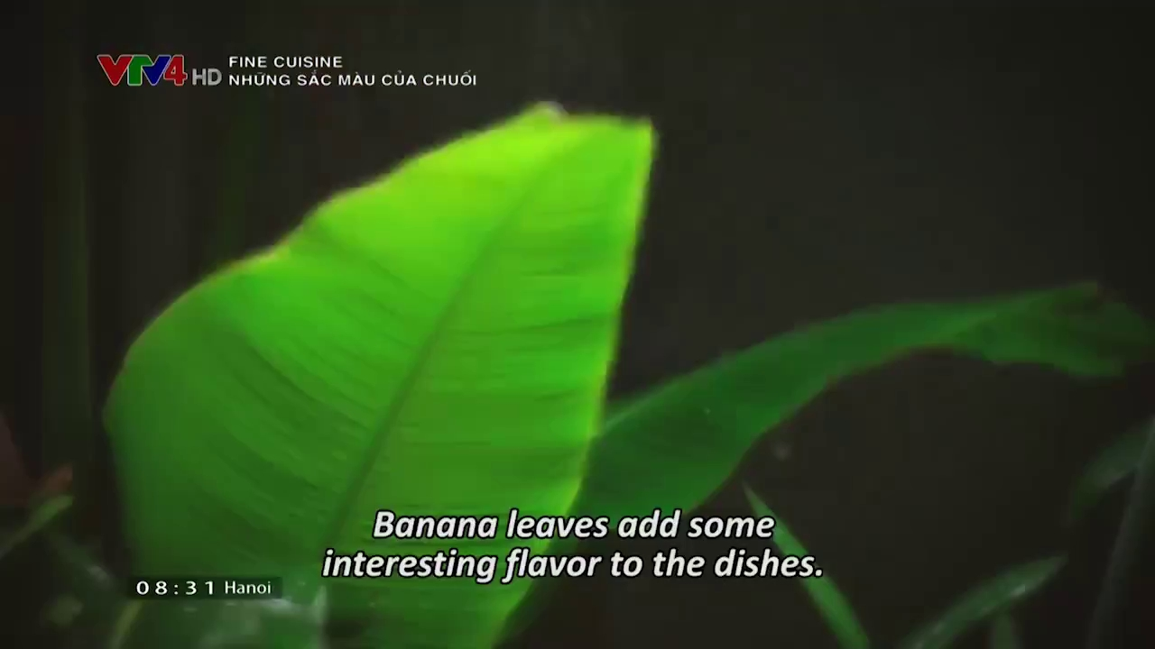 Fine Cuisine: Colors of banana
