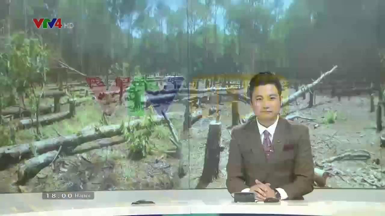 News 6 pm - 10/14/2017