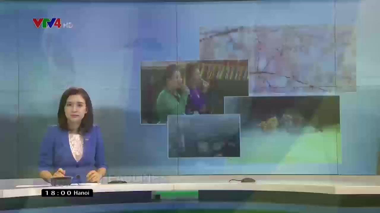 News 6 pm - 7/14/2017