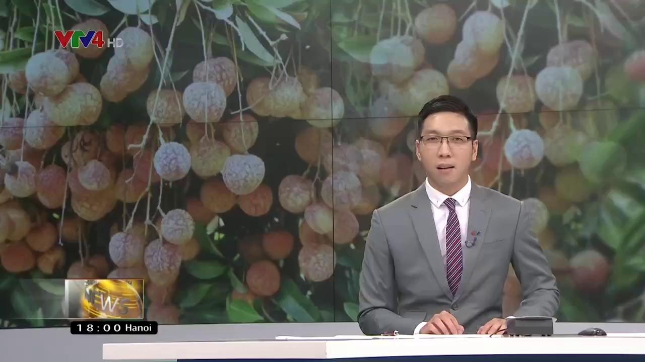News 6 pm - 6/17/2017