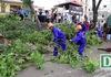 Hà Nội bắt đầu chặt hạ gần 1.300 cây xanh trên đường Phạm Văn Đồng