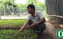 """Lão nông Nguyễn Duy Đô chia sẻ về kinh nghiệm trồng cây ăn quả trên vùng """"đất chết"""""""