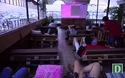 Rạp chiếu phim ngoài trời độc đáo thu hút giới trẻ ở Sài Gòn