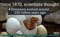 Bác bỏ giả thuyết tồn tại 130 năm về nguồn gốc của loài khủng long