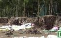 Nhiều diện tích rừng đặc dụng tan hoang sau đợt triều cường mạnh