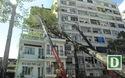 Cây dầu cổ thụ đổ đè nhà 3 tầng ở trung tâm Sài Gòn