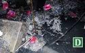 Cận cảnh ô nhiễm kinh hoàng tại biệt thự cổ 146 Quán Thánh.