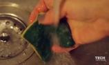 Cách loại bỏ vi khuẩn trong miếng bọt biển rửa bát