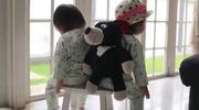 Hai chị em đặc biệt thích chơi với nhau