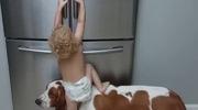 Nhờ chú chó mở cửa tủ lạnh