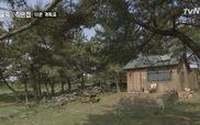"""Tập 7 """"Little house in the forest"""": Chú cún """"hàng xóm của So Ji Sub"""" đến thăm Park Shin Hye"""