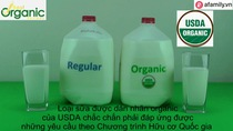 Khác nhau giữa sữa organic và sữa thường