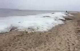 Thực hư hiện tượng sóng biến thành băng giá vào giữa mùa hè nóng bức