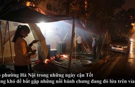 Người dân Hà Nội thức thâu đêm, Hàng xóm quây quần vui vẻ bên nồi bánh chưng Tết