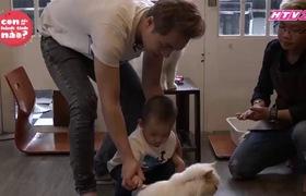 """""""Con đến từ hành tinh nào"""" tập 16: Đăng Khôi thấy có lỗi vì con trai làm đau mèo"""