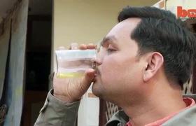 Chuyện lạ: Những người uống nước tiểu của bò như nước giải khát