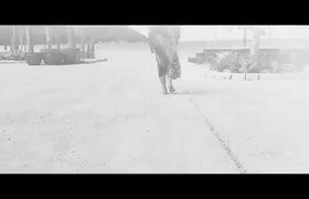 """MV """"Hãy về với em"""" - Tiêu Châu Như Quỳnh trở lại sau ồn ào """"đạo nhái"""" váy hoa."""