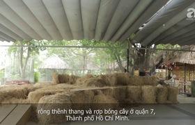 """Giữa Sài Gòn, có một trường mẫu giáo không có lớp học để trẻ thỏa sức """"dầm mưa dãi nắng"""" cả ngày"""