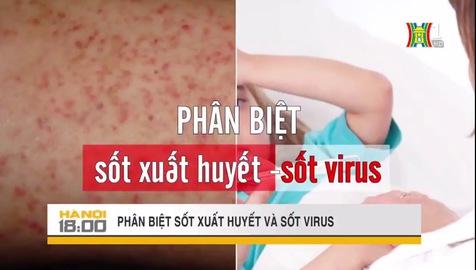 Phân biệt sốt xuất huyết và sốt virus