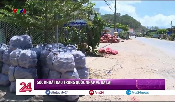 Góc khuất rau Trung Quốc nhập về Đà Lạt. Nguồn: VTV