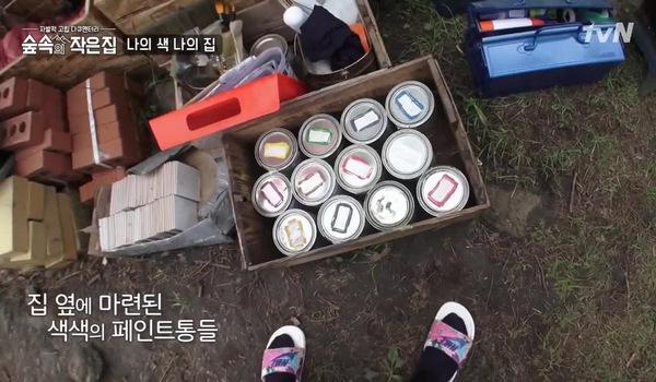 Park Shin Hye và So Ji Sub trang trí cho căn hộ giữa rừng của mình.