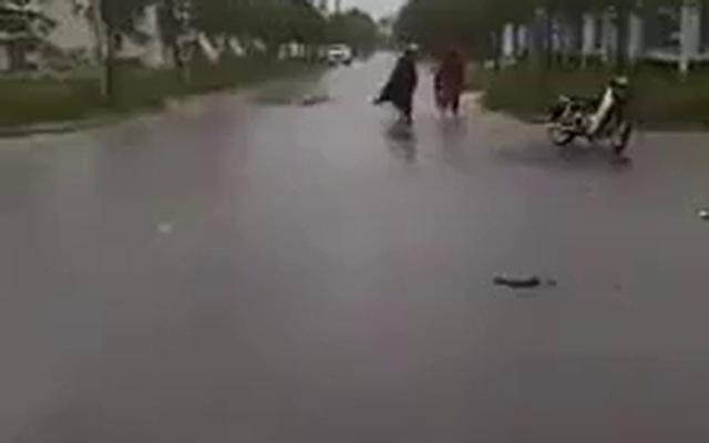 Clip: Người dân đổ xô ra đoạn đường ngập bắt cá giữa tâm bão số 4
