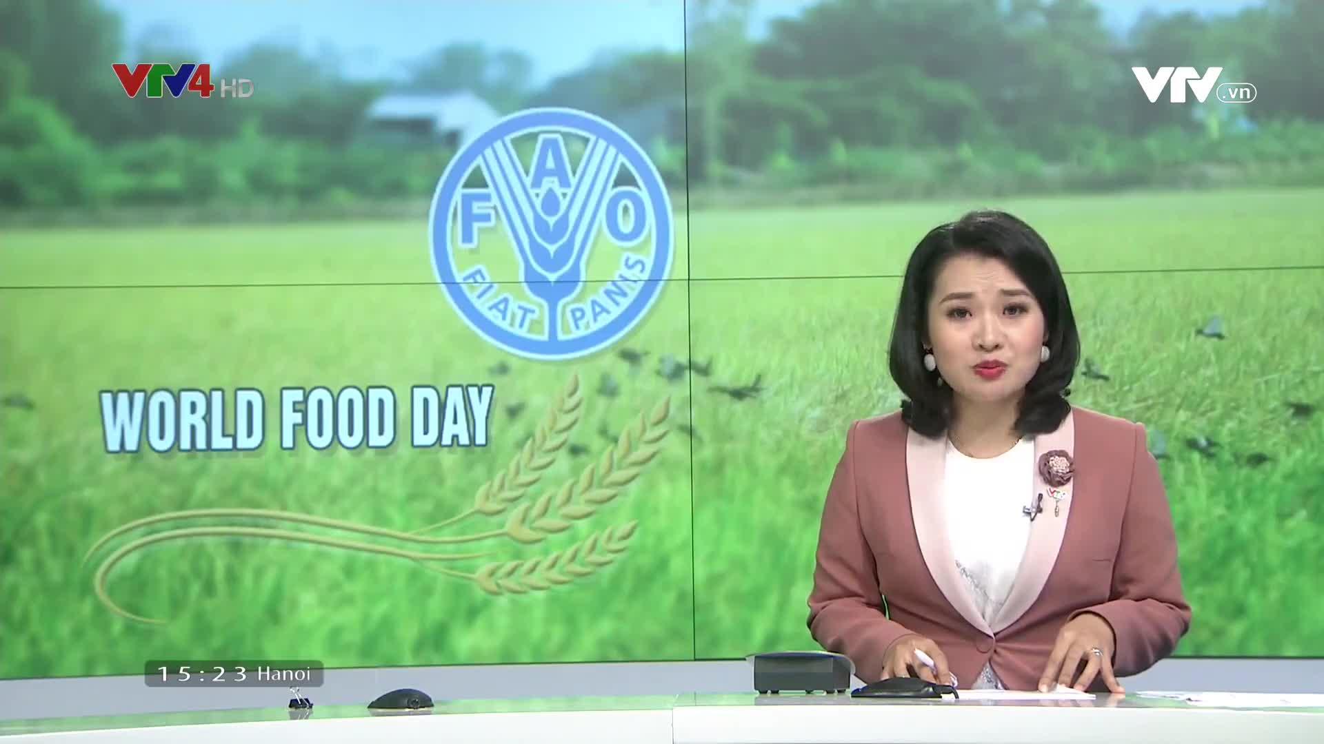News 3 PM - 10/16/2019
